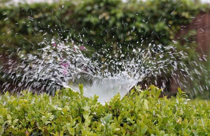5 sistemas de riego para tu jardín