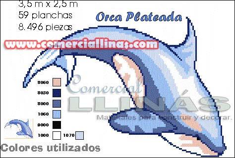 Dibujo fondo piscina Orca plateada pequeña