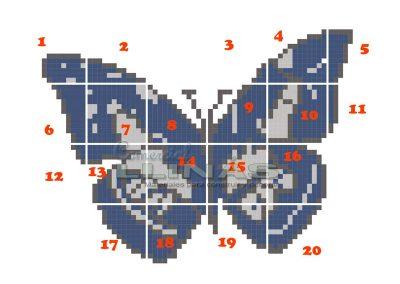 dibujo-personalizado-para-piscina-mariposa