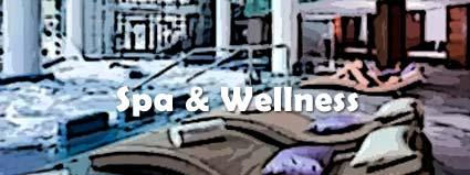 Spa y Wellness
